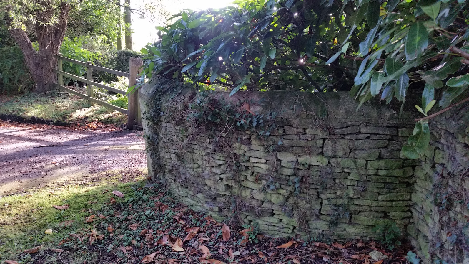 Curved wall in Wilcote